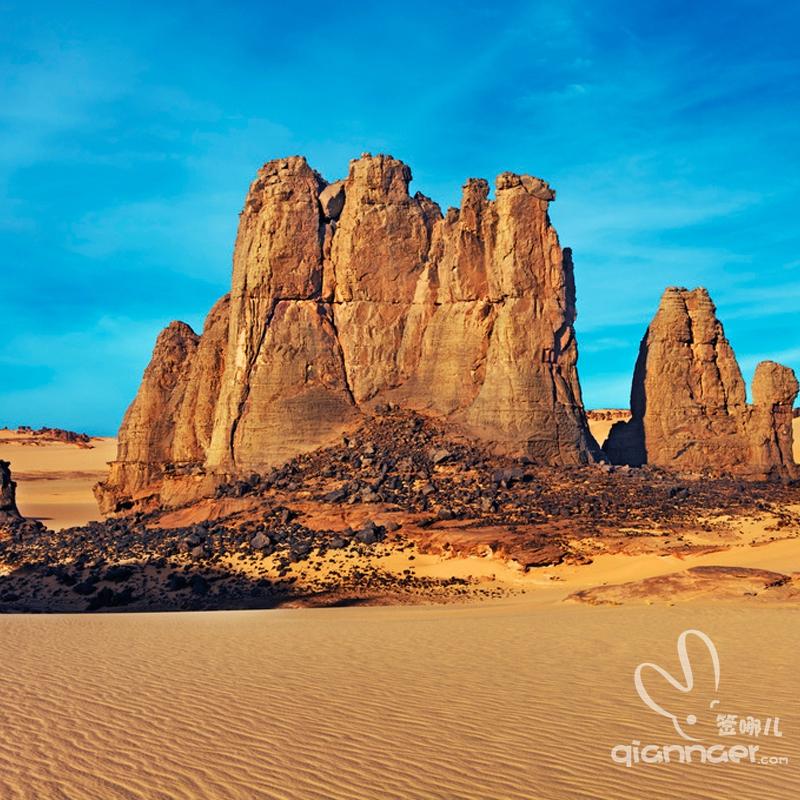 阿尔及利亚商务签证(中国人)