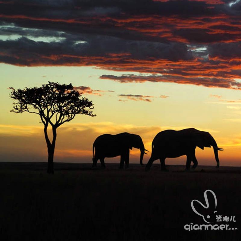 肯尼亚旅游电子签证+全国受理+简单材料